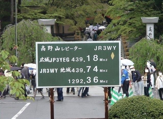DSC01128 (1).JPG